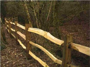 3 bar Chestnut fence