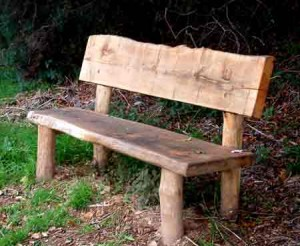 Community Woodland Bench