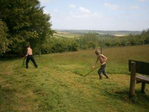 Scything at Pentiddy Natural Burials.