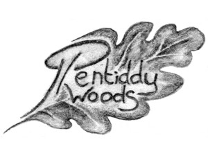 Pentiddy Woods